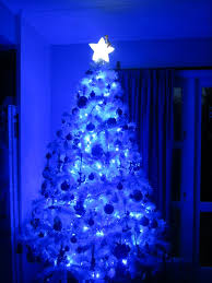 White Lighted Christmas Trees Outdoors Outdoor Blue Led Christmas Lights Light Design Cool And