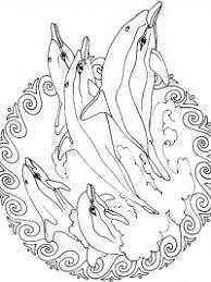 20 Gratis Te Printen Dolfijn Kleurplaten Topkleurplaatnl