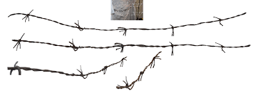 barbed wire fence png. Brilliant Wire Barbed Wire Fence Png Svg Library Throughout Wire Fence Png C