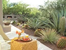 southwest outdoor decor how to give your desert backyard southwestern flair the garden glove southwest garden southwest outdoor decor