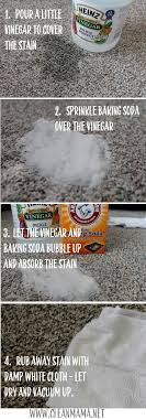 Make a solution by mixing 1/3 cup white vinegar and 2/3 cup of. Spring Cleaning Carpet Cleaning 2 Ways To Diy Clean Mama