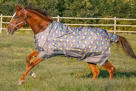 Showman Unicorn Print 1200 Denier Waterproof Turnout Blanket