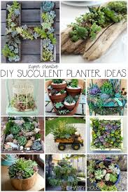 with you in case you re looking for some creative unique and interesting ways to add some succulents to your outdoor space or garden this summer