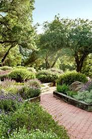 Small Picture Best 25 Mediterranean garden design ideas on Pinterest