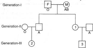 Study The Following Pedigree Chart Of A Family Starting