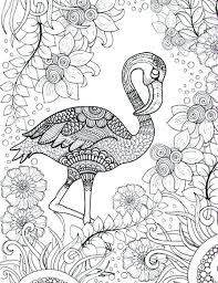 Bird Coloring Pages For Adults Image Result For Adult Coloring Pages