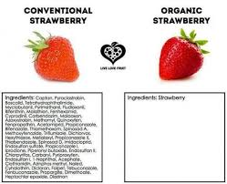 A Conventional Strawberry vs An Organic Strawberry | GreenMedInfo ... via Relatably.com