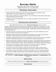 Personal Assistant Resume Sample Luxury Administrative Assistant