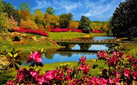 hd wallpaper nature spring. Wonderful Spring Spring Wallpapers HD For Desktop New And Hd Wallpaper Nature N