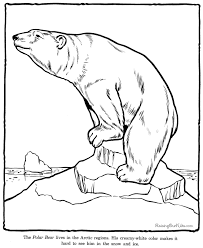 Small Picture Polar Bear coloring sheets and pictures