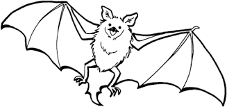 Small Picture Cute Bat coloring page Free Printable Coloring Pages