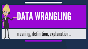 Image result for wrangling