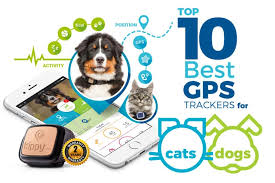 Best Gps Trackers For Cats 2017 Track Your Pet Via Gps Dog Tracker