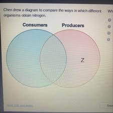 Producer And Consumer Venn Diagram Chen Drew A Diagram To Compare The Ways In Which Different