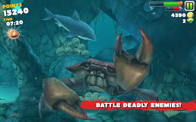 "Image result for ""hungry shark"""
