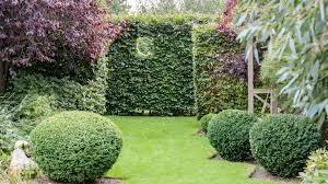 garden edging ideas create neat tidy