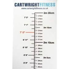 Wall Sticker Height Chart