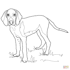 Dog Coloring Pages | All Coloring Pages