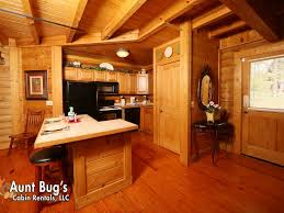 one bedroom cabin. property image#8 a slice of paradise in one bedroom cabin near downtown pigeon