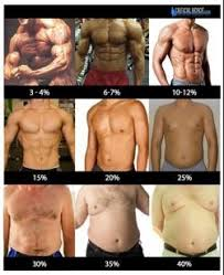 Body Fat Men Chart The Nfl Body Part 2 Body Fat Percentage Thin Air