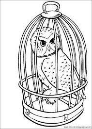Free Printable Harry Potter Coloring Pages Enjoy Harry Potter