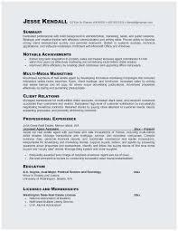 Professional Sales Resume Sales Resume Summary Resume Sample