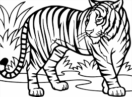 Small Picture Resume Format Download Pdf Ideas Cute Tiger Cartoon Coloring Tiger
