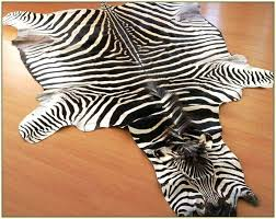 real zebra skin rug uk designs with ideas 0