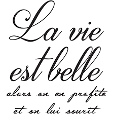 La Vie Est Une Fête Citation Webwinkelbundel