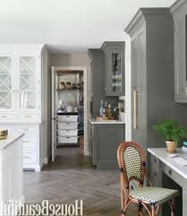 what color should i paint my kitchen with white cabinets amusing all schemes travelemag cabinet colors painting wood dark painted kitchens is the best for