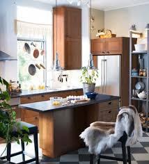 Ikea Small Kitchen Ideas Unique Inspiration