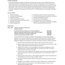 Resume Professional Summary Examples Merchandise Planner And Buyer Resume Professional Summary Template 25