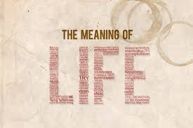 the meaning of life where do we it