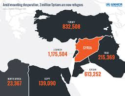 United Nations Nearly Half The Syrian Population Now
