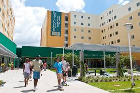 usf essay prompt best images about university of south florida usf best images about university of south florida 17 best images about university of south florida logos prompt for essay