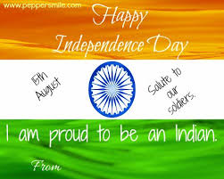 the best independence day ideas happy  independence day 15