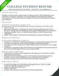 College Student Resume Example Adorable Sample Community College Professor Resume Info Adjunct Brilliant