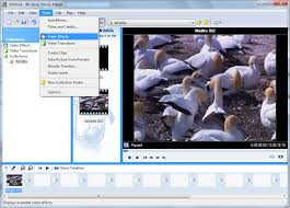 Free Timeline Software For Windows 11 Free Video Crop Editor To Crop Video Easily And Quickly