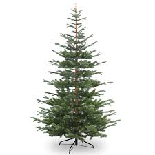 Ordinary Artificial Christmas Trees Uk Part - 2: 7ft Nobleman Spruce  Feel-Real Artificial