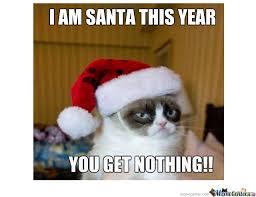 grumpy cat christmas hat.  Grumpy Grumpy Cat Santa Inside Christmas Hat
