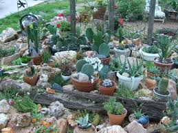 Small Picture Perfect Indoor Cactus Garden Patio Porch Planter Eclectic Pots