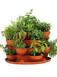 Small Picture Garden Design Garden Design with Stack uamp Grow Planter Plus