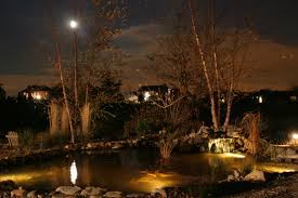 Aquascape Pond Lights Aquascapes Pond Lighting Water Features In The Garden