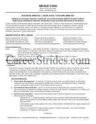 Business Analyst Resume Business Analyst Resume Summary Full