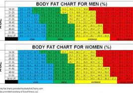 Fat Percentage Chart Bmi And Fat Percentage Chart Maybe The Quest Is What Matters Most