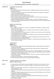 Facilitator Resume Samples Velvet Jobs