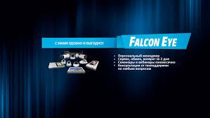 Охранные системы <b>Falcon Eye</b>