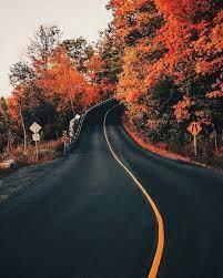 Autumn scenery, Autumn aesthetic ...