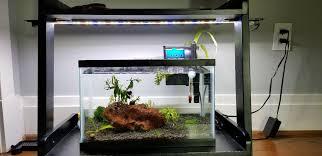 Finnex Stingray Aquarium Led Light Lighting Options For A Low Light 5 5 Gallon Betta Tank My