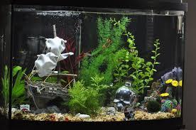 Fun Fish Tank Decorations The Pirate Aquarium Theme Interesting Considerations On Subject